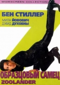 Фильм Образцовый самец